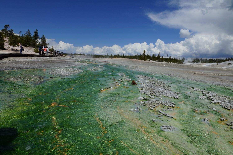 Encore une fois, la couleur est due aux milliards de bactéries présentes dans l'eau