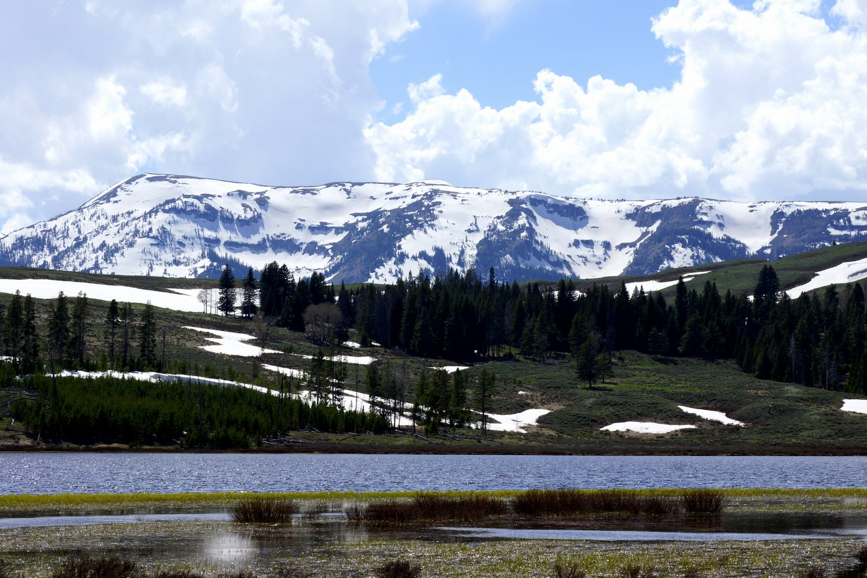 Un panorama typique de Yellowstone : arbres, eau, montagnes et prairies